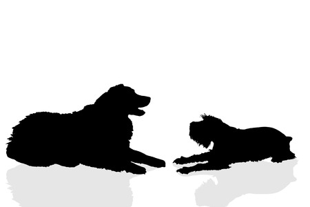 silhouette dog: Vector silhouette of a dog on a white background.