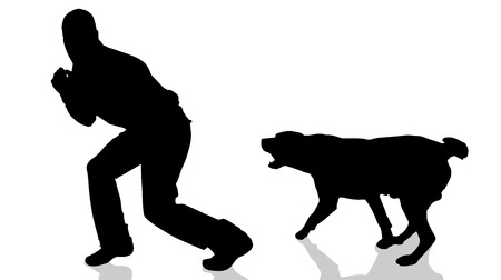 animal silhouette: Vector silhouette of a man with a dog.