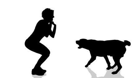 dangerous woman: Vector silhouette of a woman with a dog.