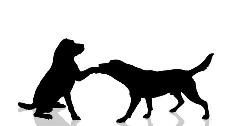 doggies: Vector dogs silhouette on a white background. Illustration