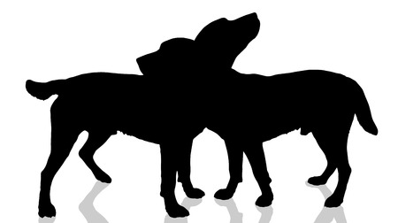 cute dog: Vector dogs silhouette on a white background. Illustration
