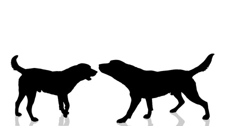 animal silhouette: Vector dogs silhouette on a white background. Illustration