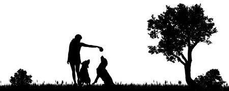 ball park: Vector illustration of a woman with a dog in the countryside.