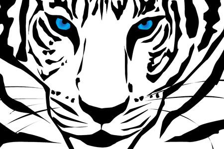 Vector silueta de tigre en el fondo blanco.