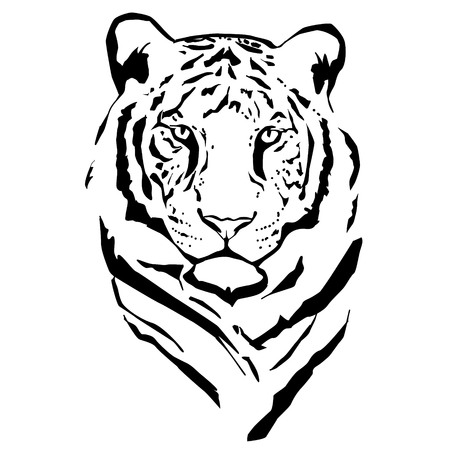 Vector silhouette of tiger on white background.