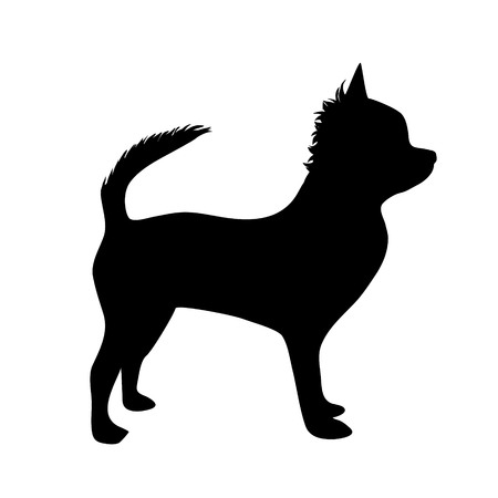 nice stay: Vector illustration of dog on a white background.