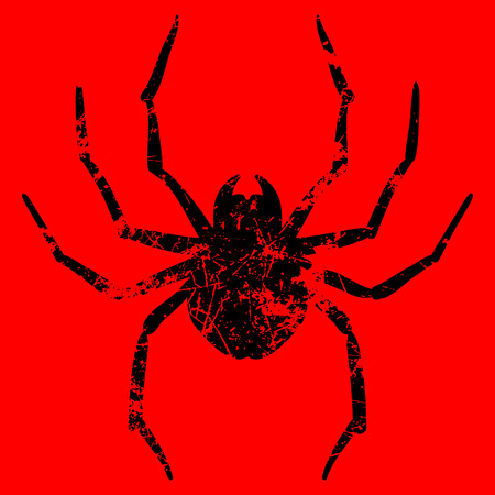 arachnophobia: Vector illustration of spider on red background