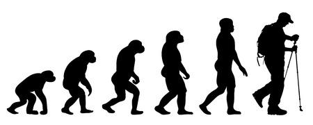 Vector evolutie nordic walking op een witte achtergrond Vector Illustratie