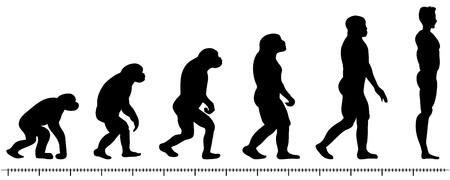 Vector de evolución, el hombre silueta sobre fondo blanco