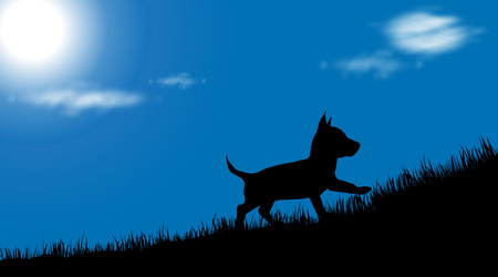 Vector illustration of dog on meadow at sunny day.