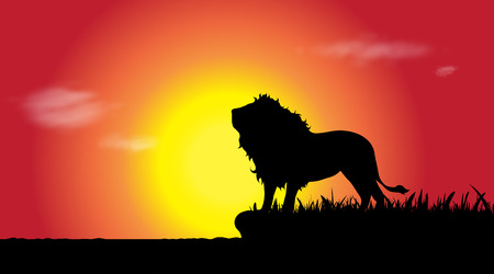 Vector silhouette of lion in nature at sunset. 向量圖像