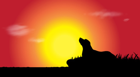 Vector silhouette of dog who lying at sunset.