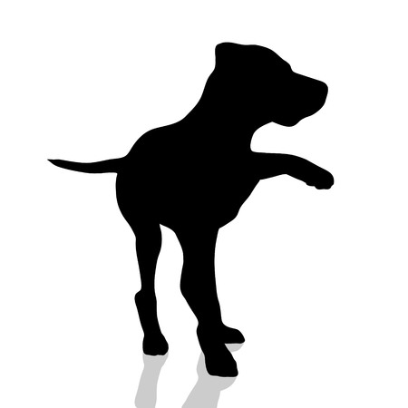 labrador: Vector silhouette of dog on white background. Illustration
