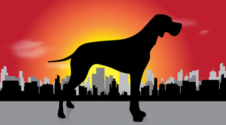 Vector illustration of dog in the city at sunset.