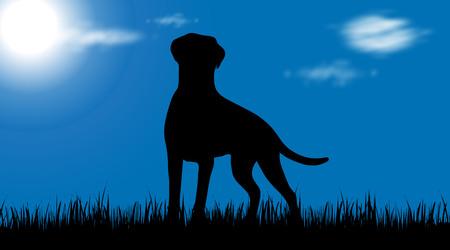 Vector silhouette of dog on garden. Illustration