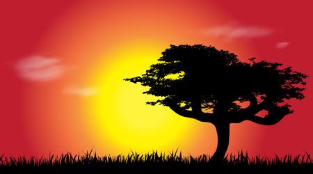 Vector silhouette of savana at sunset. Ilustrace