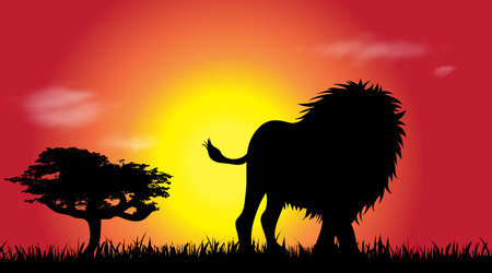 Vector silhouette of lion at savana.