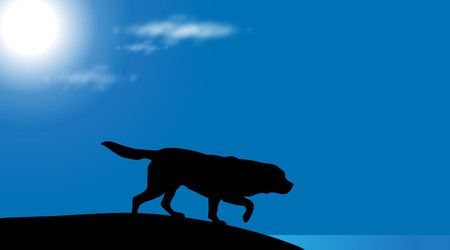 labrador: A Vector silhouette of dog on the beach at sunny day.
