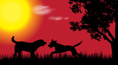 labrador: Vector silhouette of dog in nature at sunset. Illustration