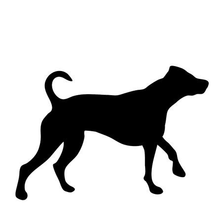 Vectorsilhouet van hond op witte achtergrond.