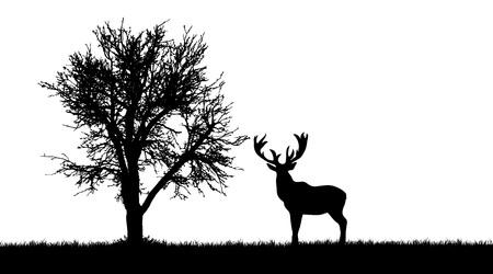 Vectorsilhouet van herten in bos op witte achtergrond.