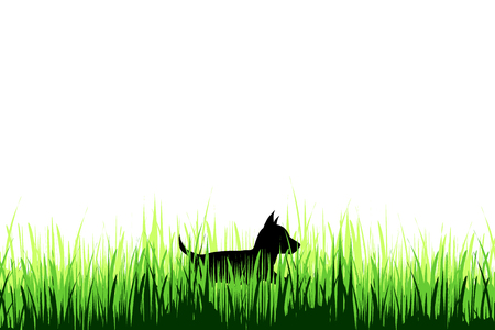 Vector silhouette of deer on a meadow on white background.