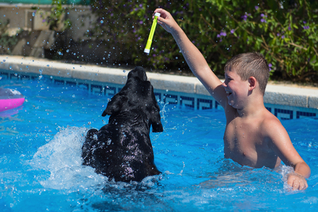 The boy play with dog in the swimming pool.