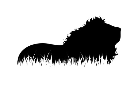 Vector silhouette of lion in the grass on white background.