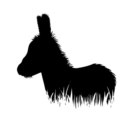 Vector silhouette of donkey in the grass on white background.