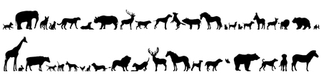 Vector silhouette of set of different animals. Illustration