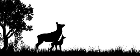 Vector silhouette of forest with hind and baby hind.