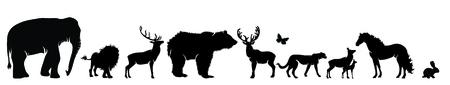 Vector silhouette of wild animal on white background. Illusztráció