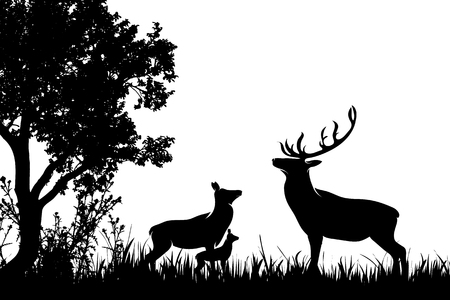 Vector silhouette of forest with deer,hind and baby hind. Vettoriali
