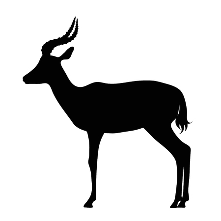 Vector silhouette of antelope on white background. Illustration