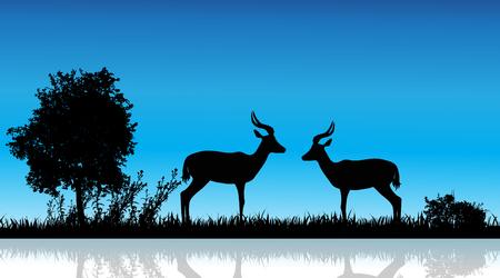 Vector illustration of antelope in nature on white background. Wild animal.