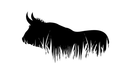 Illustration of bull icon in the grass. Vector silhouette on white background. Symbol of cattle. Illustration