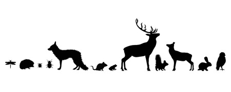 Illustration of set forest´s animals icon. Vector silhouette on white background.