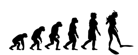 Theory of evolution of woman. Vector silhouette of homo sapiens. Symbol from monkey to diver.