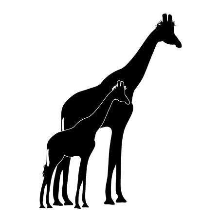 Vector silhouette of giraffe�s mother with baby giraffe. Symbol of animal and wild. Ilustração