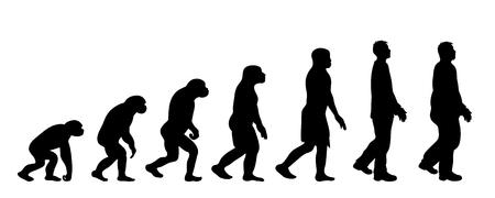Teoria ewolucji człowieka. Sylwetka wektor homo sapiens. Symbol od małpy do grubasa.