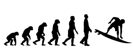 Theory of evolution of man. Vector silhouette of homo sapiens. Symbol from monkey to surfer.
