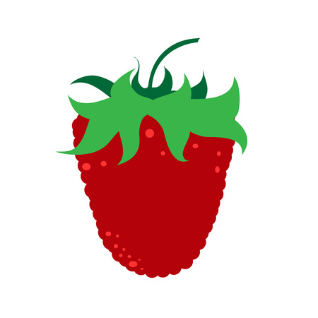 Vector illustration of painted raspberry on white background. Symbol of fruit, food,vegetarian,vegan.