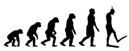 Teoría pintada de la evolución de la mujer. Silueta de vector de homo sapiens. Símbolo de mono a buceador.
