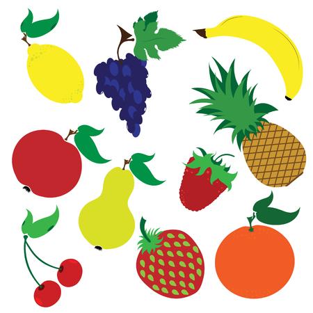 Vector illustration painted of set of fruit on white background. Symbol of food,vegetarian,vegan.