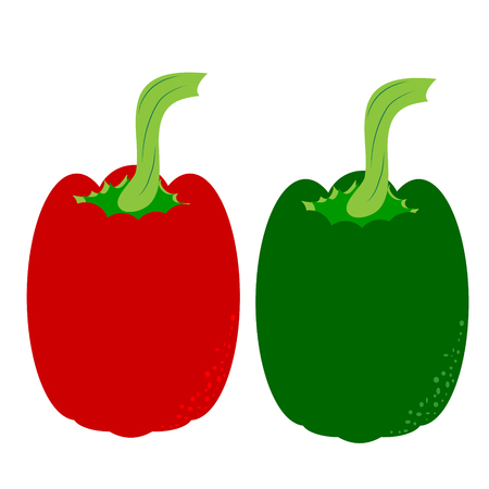 Vector illustration of painted pepper on white background. Symbol of vegetable, food,vegetarian,vegan.