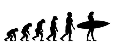 Painted theory of evolution of woman. Vector silhouette of homo sapiens. Symbol from monkey to surfer. 向量圖像