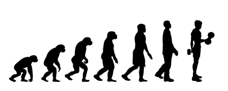Painted theory of evolution of man. Vector silhouette of homo sapiens. Symbol from monkey to body builder. 向量圖像