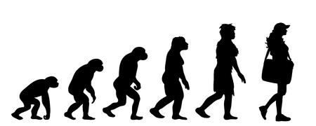 Painted theory of evolution of woman. Vector silhouette of homo sapiens. Symbol from monkey to businesswoman.