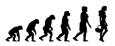 Painted theory of evolution of woman. Vector silhouette of homo sapiens. Symbol from monkey to lady. Иллюстрация