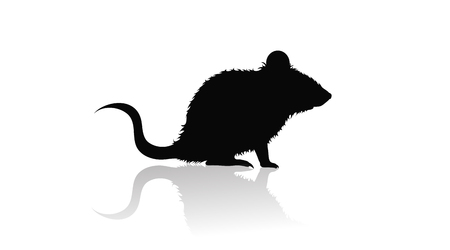 Vector silhouette of mouse on white background. Symbol of animal and nature.